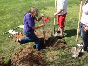 Janet Tarjan prepping the ground