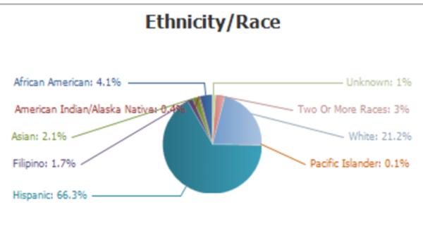 Pie Chart Student Demographics June 14 2017
