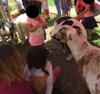 CDC Petting Zoo 2
