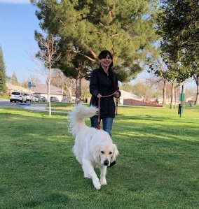 Feb 10 2018 Sonya Christian Walking Neo 2