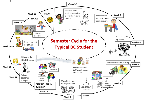 Semester Cycle by Eileen Pierce