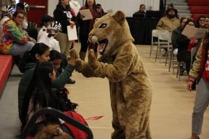 McFarland cougar